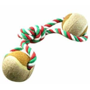 Ball Dog Toy